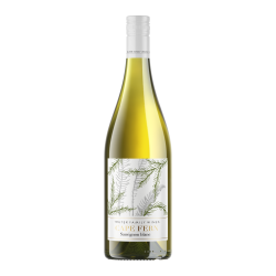 Some of Lynn - Cape Fern Sauvignon Blanc